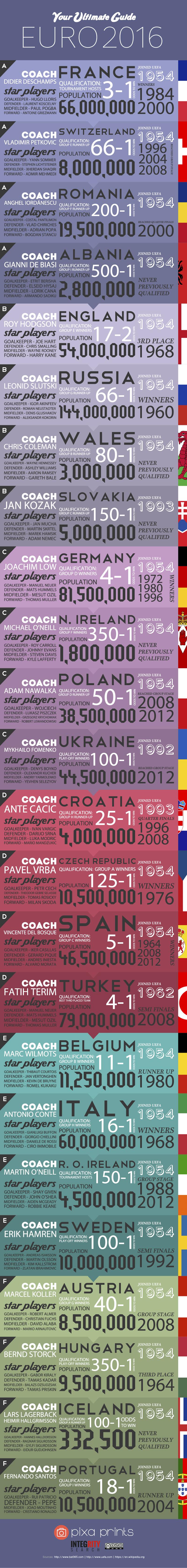 Euro 2016 Infographic